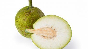 Breadfruit Nutrition Benefits